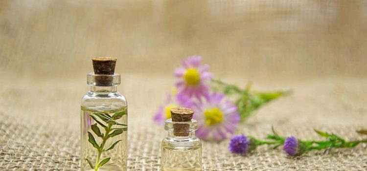 essential oils plants